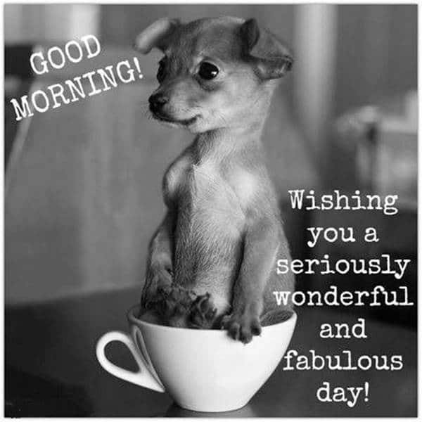 38 Good Morning Cards to Boost your Morning 20