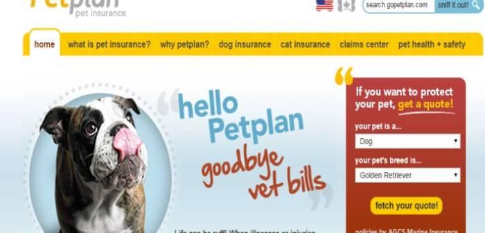 Boomtrain ICYMI Personalization Top Dog Big Data