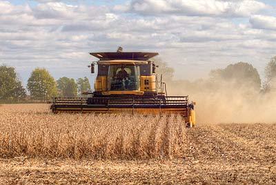 soybean-harvesting