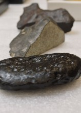 Tektite & Meteorite, Dayton Society of Natural History