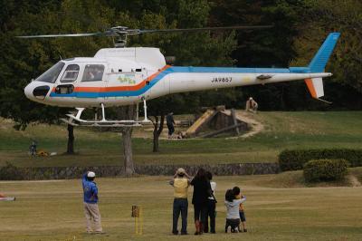 遊覧飛行(東邦AS350)