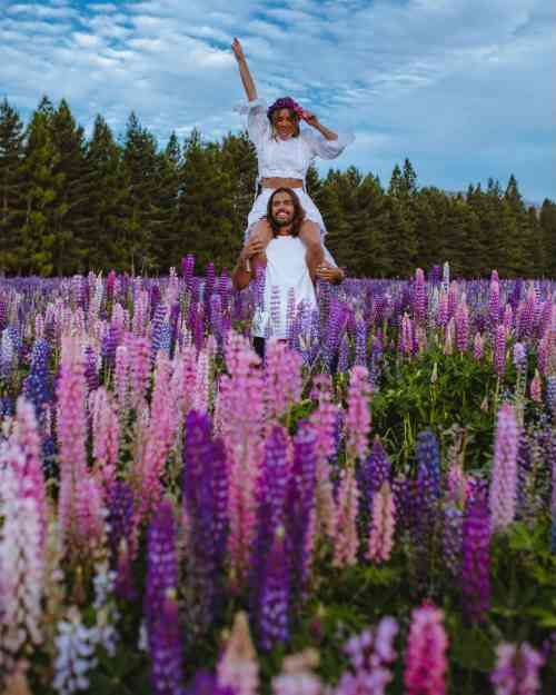 Travel influencer couple Hayley Anderson, @haylsa, and Kyle Hunter, @kyle_hunter in a lupin field in New Zealand