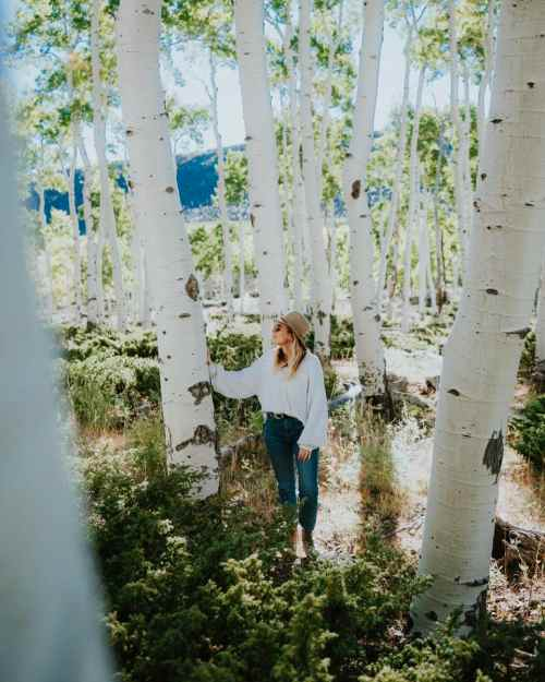 Mel Vandersluis in the Pando Aspen Grove in Utah