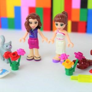 LEGO® Friends Bundle