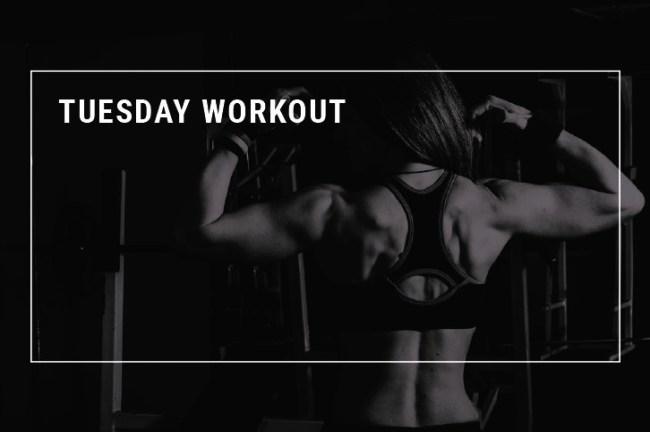 Allenarsi con una bodybuilder - Roberta - Martedì – Petto e dorso