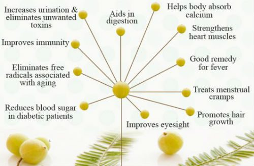 gooseberry benefits