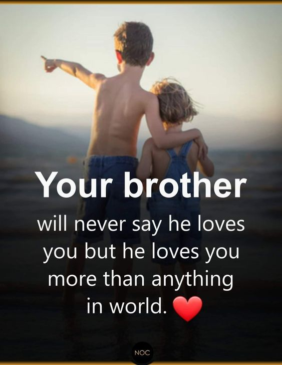 Best Brother Quotes And Sibling Sayings Boostupliving