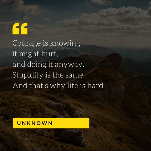Courage is knowing it might hurt, and doing it anyway. Stupidity is the same. And that's why life is hard