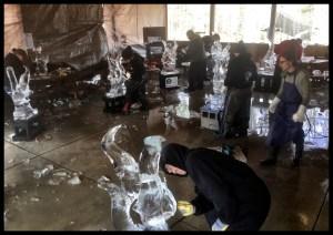 Angel fish Ice Caving Class