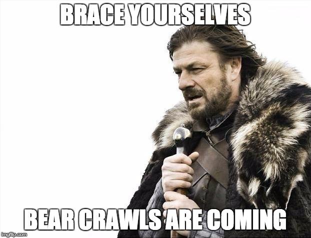 brace-bearcrawl