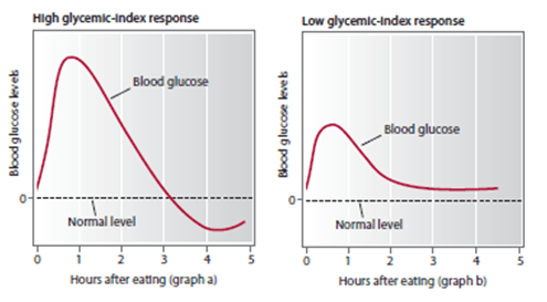 Blood Glucose Changes Following Carbohydrate Intake (Glycaemic Index).