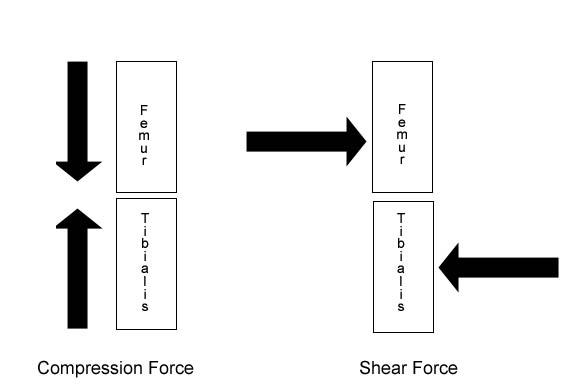 Compression & Shear Force, Knee Stress