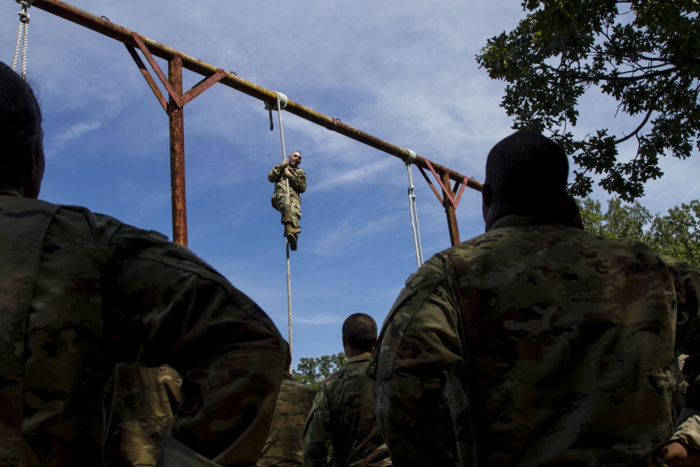 An Overview of the US Army Drill Sergeant – Boot Camp & Military