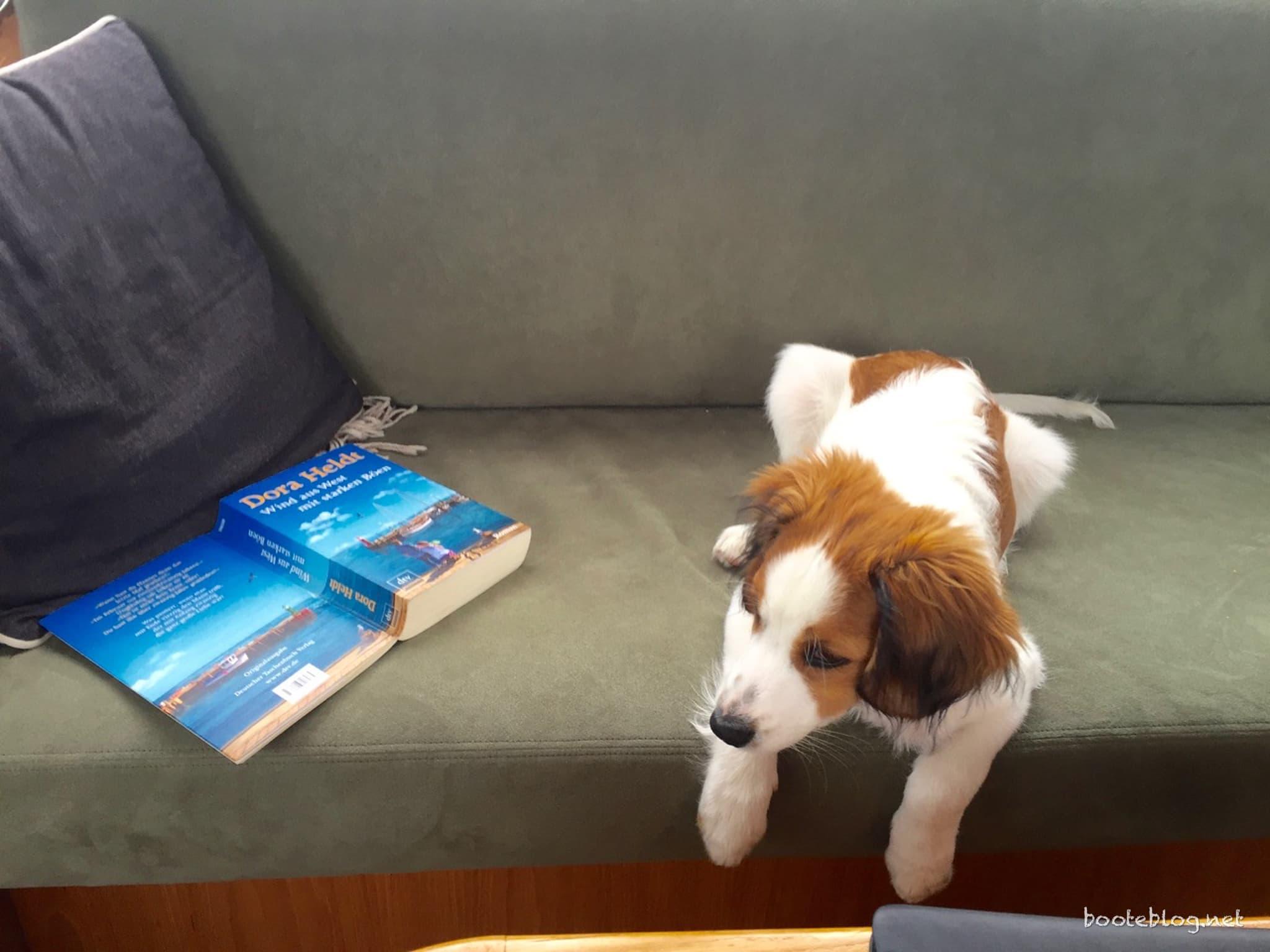 Das Buch fand Ole eher anknabber- denn lesenswert.