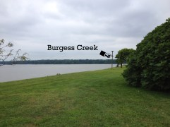 Burgess Creek