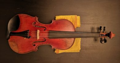 1605-violin-front-1-390×205