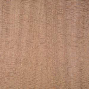 lacewood-qtr-2
