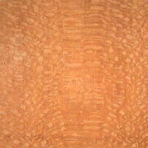 lacewood-qtr