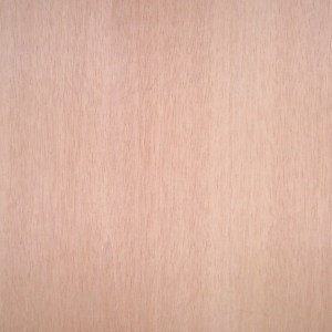 mahogany-qtr-blonde