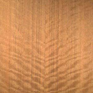 mozambique-qtr-fig