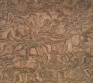 walnut burl sample