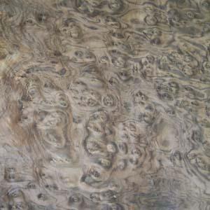 walnut-burl