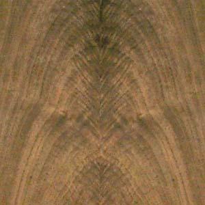 walnut-crotch-2