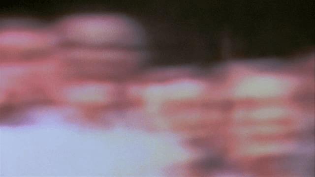 vlcsnap-2019-01-13-21h54m31s486
