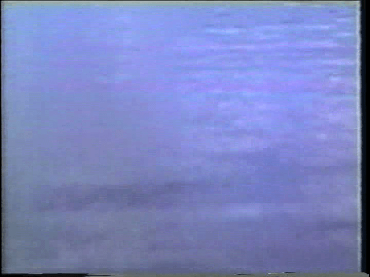 vlcsnap-2019-03-19-00h06m49s521