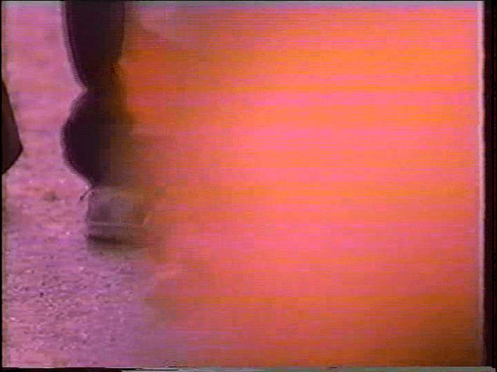 vlcsnap-2019-03-19-13h55m52s473