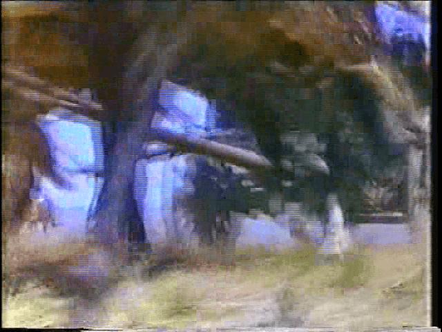 vlcsnap-2019-03-20-01h24m34s844