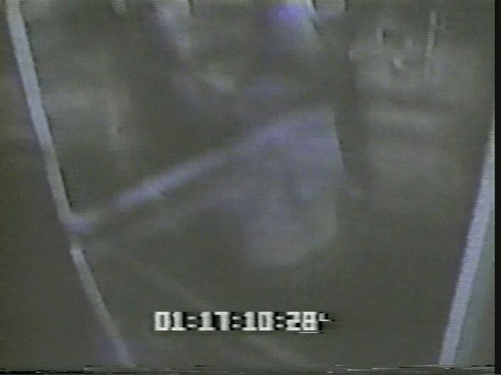 vlcsnap-2019-08-12-19h08m16s210