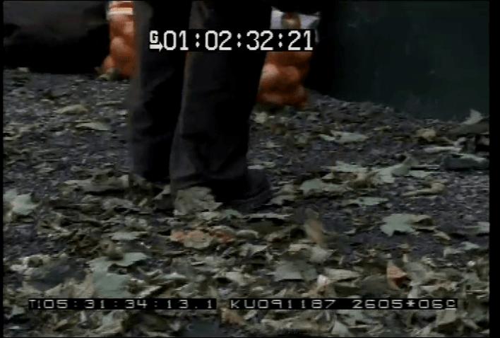 vlcsnap-2020-05-07-21h48m16s356