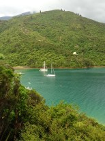 Looking down at the moorings in the Cove from the restaurant.