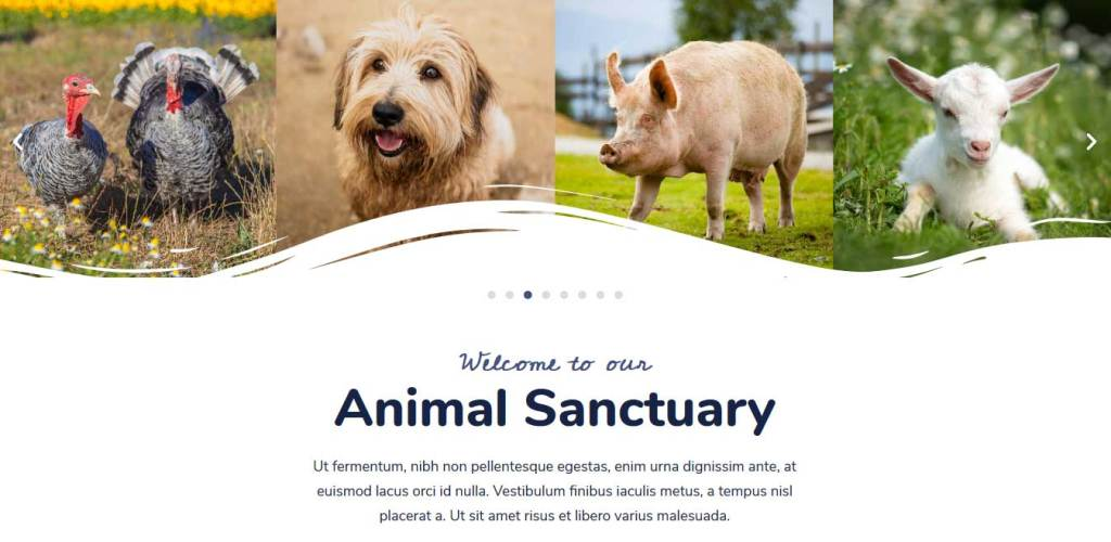 animal sanctuary : themes pour site d'animaux