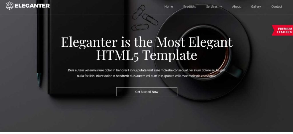Eleganter : Thème html css responsive
