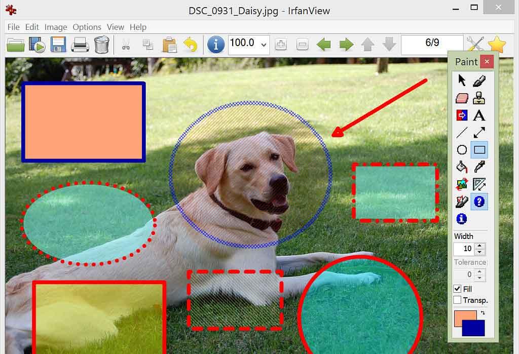 irfanview : logiciel de retouche photo