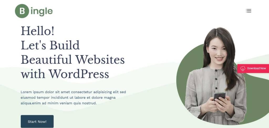 bingle : thèmes WordPress gratuits pour agence web