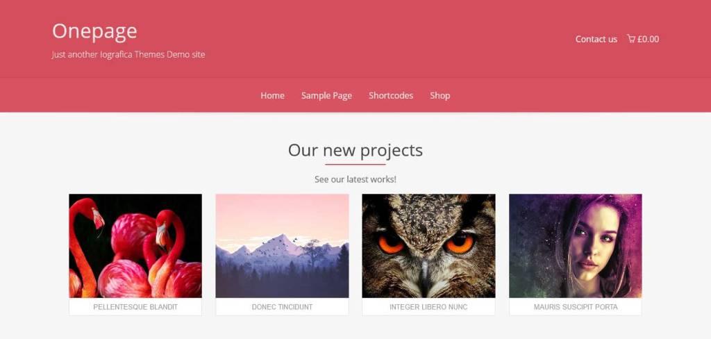 onepage : thèmes WordPress gratuits pour agence web