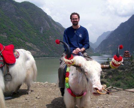 Sichuan yak
