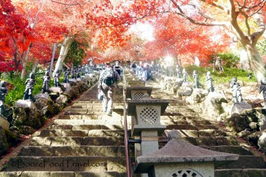 Stairs lined with Buddhas to Oyama Temple
