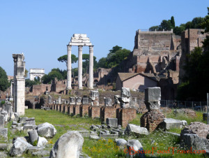 The Roman Forum from the Temple of Saturn