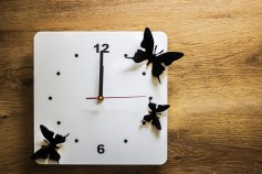 12 on clock with Butterflies Representing 12 things  I did to stop drinking and stay sober