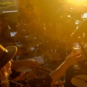 Winery, beverage, food, wine, wine tasting