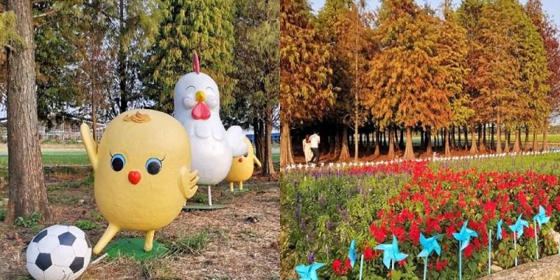 六甲菁埔埤落羽松 搭配向日葵風車、蛋蛋雞樂園絕美秘境美景超好拍