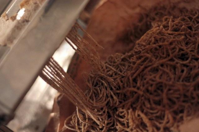 tagliolini di grano saraceno