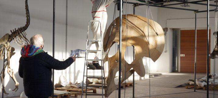Big John dinosauro