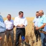 Андрей Бочаров: в Волгоградской области собран первый миллион тонн зерна