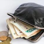 Облдума утвердила прожиточный минимум для пенсионеров на 2019 год