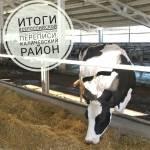В зеркале сельскохозяйственной статистики